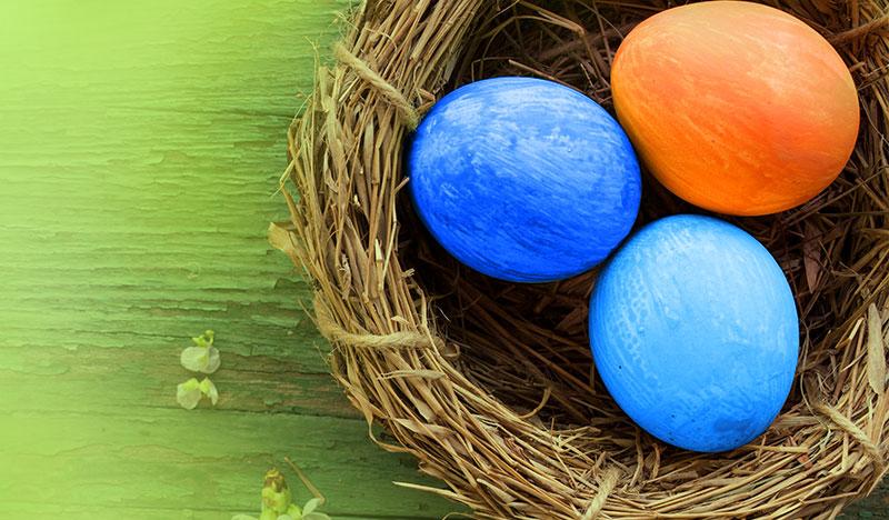 orangene und blaue ostereier in osternest